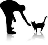 gatto-e-uomo-su-sfondo-bianco-con-ombra
